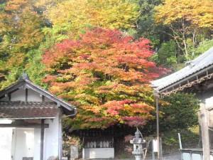 秋の永聖寺